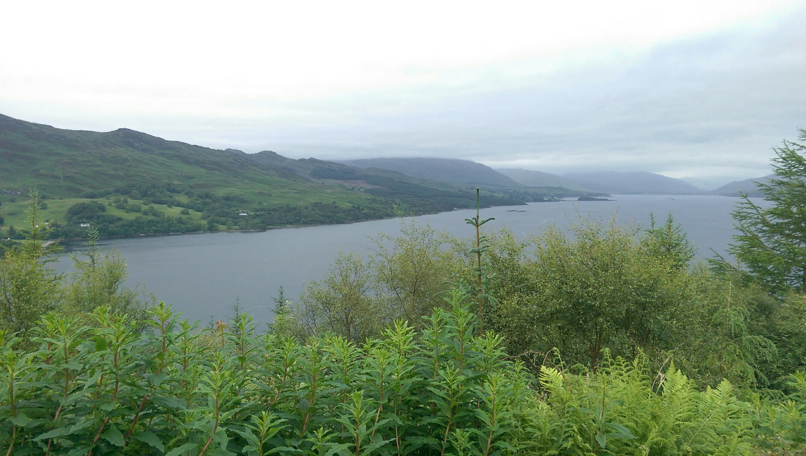 Schottland 6 Bild